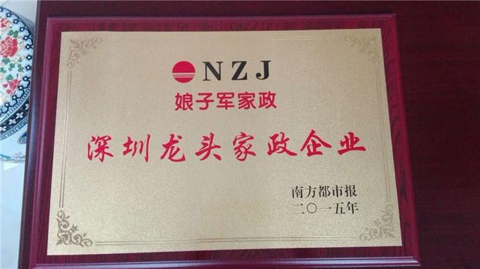 深圳龙头家政企业